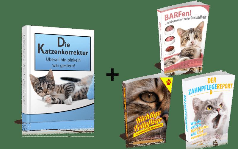 https://hilfe-katze-pinkelt.de/wp-content/uploads/khjk.png